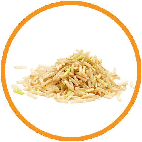 Rice-Protein