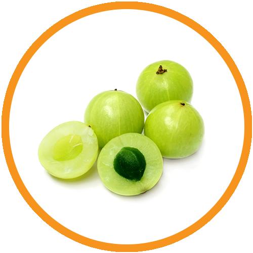 Amla-(Indian-Gooseberry)-Extract
