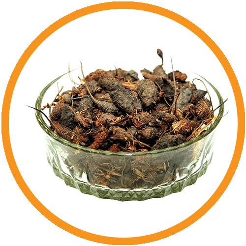 Nagarmotha-(Nutgrass)-Extract