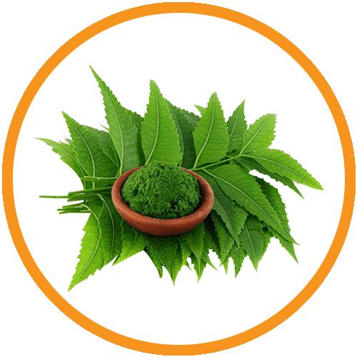 Neem-Leaf-Extract
