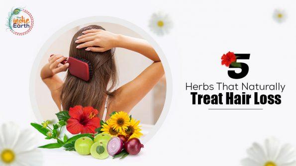 5-Herbs-that-naturally-treat-Hair-Loss