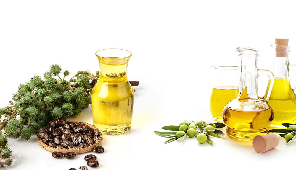 Castor-Oil-with-Olive-Oil-