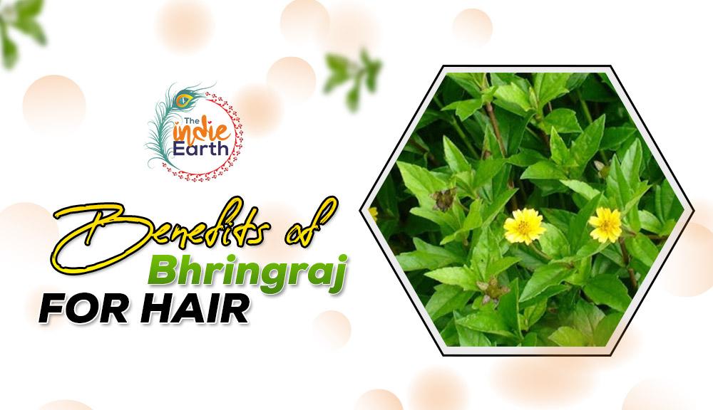 Benefits-of-Bhringraj-for-hair